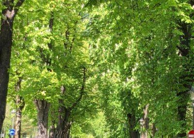 Πάρκο Γερμανία ALPHA OMEGA