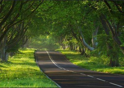 Δρόμος ALPHA OMEGA
